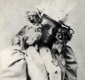 edith-wharton-and-dogs
