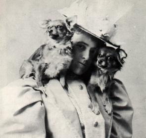 edith-wharton-and-dogs