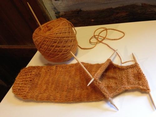 pumpkin sock 3