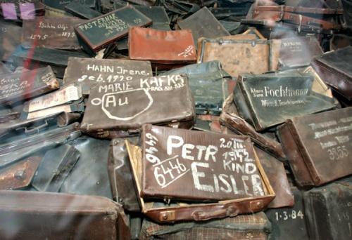 Auschwitz color suitcases