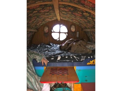 Bears Interior