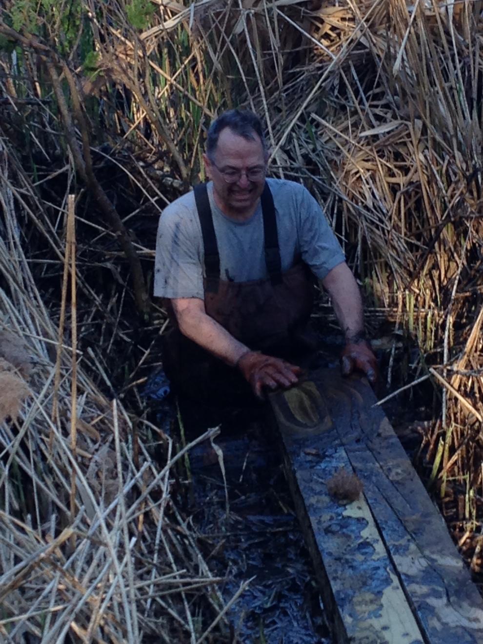 gil swamp cu
