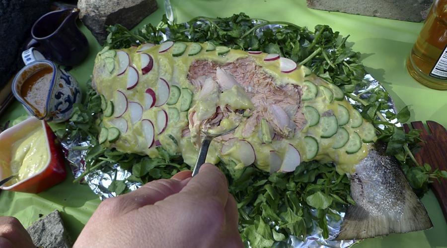 salmon josefa