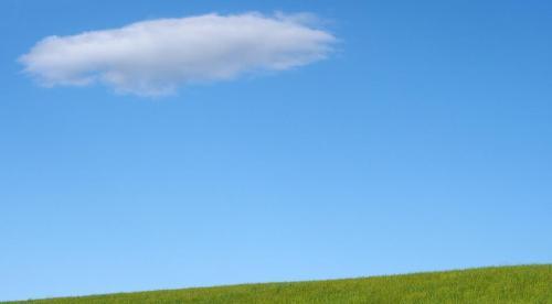 Susie's sky