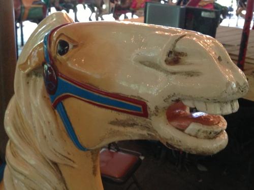 zoo horse 2