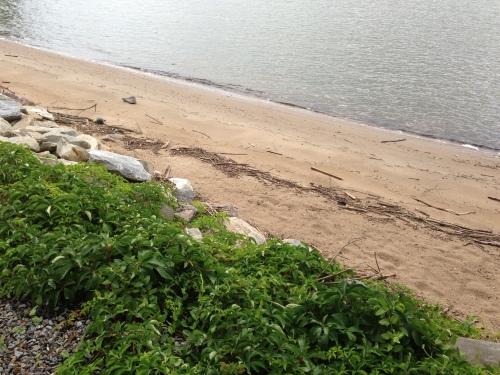 Hudson beach