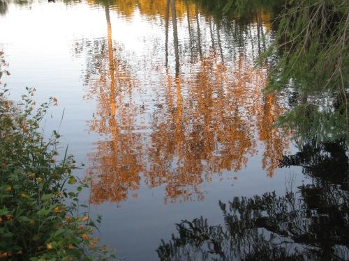 reflectionsStA