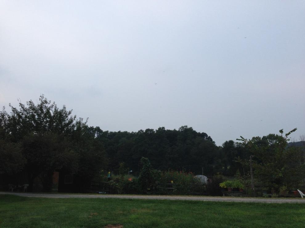 grey sky farm