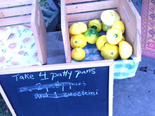 patty pans