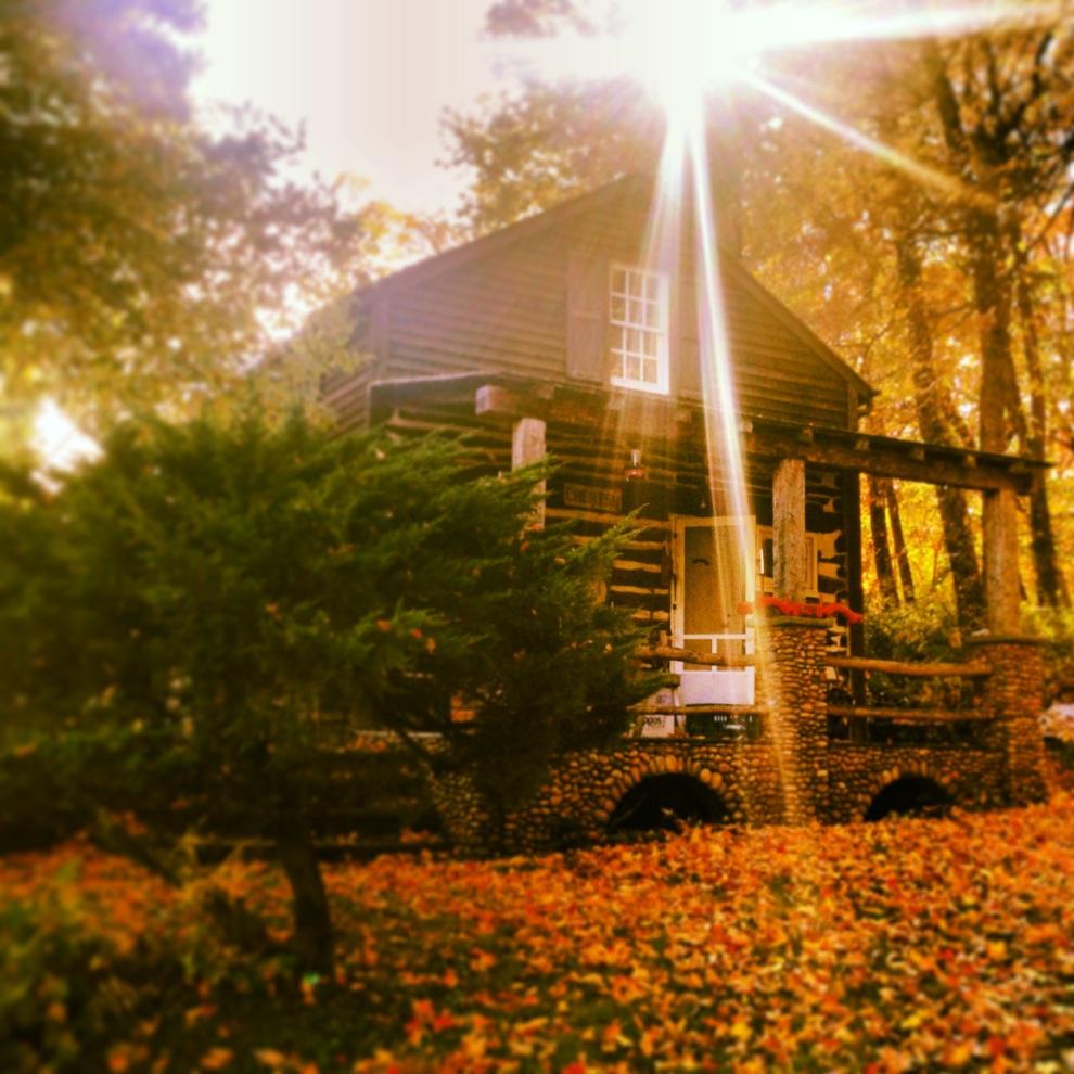 golden cabin