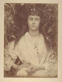 Pomona Alice Liddell