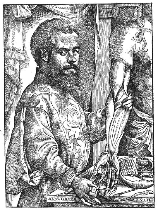 vesalius portrait