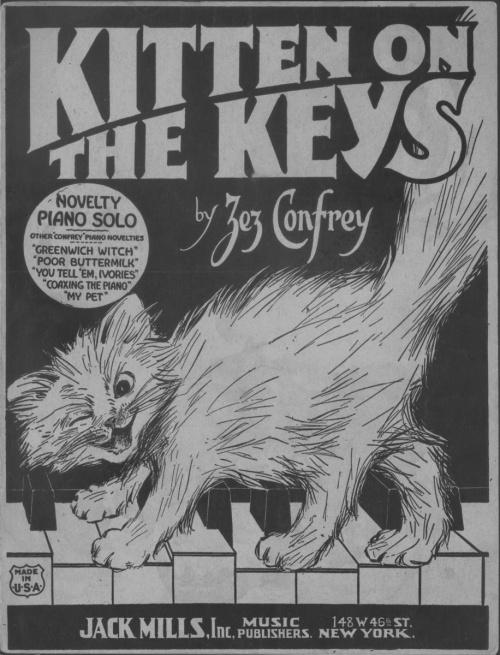 kittenonthekeys