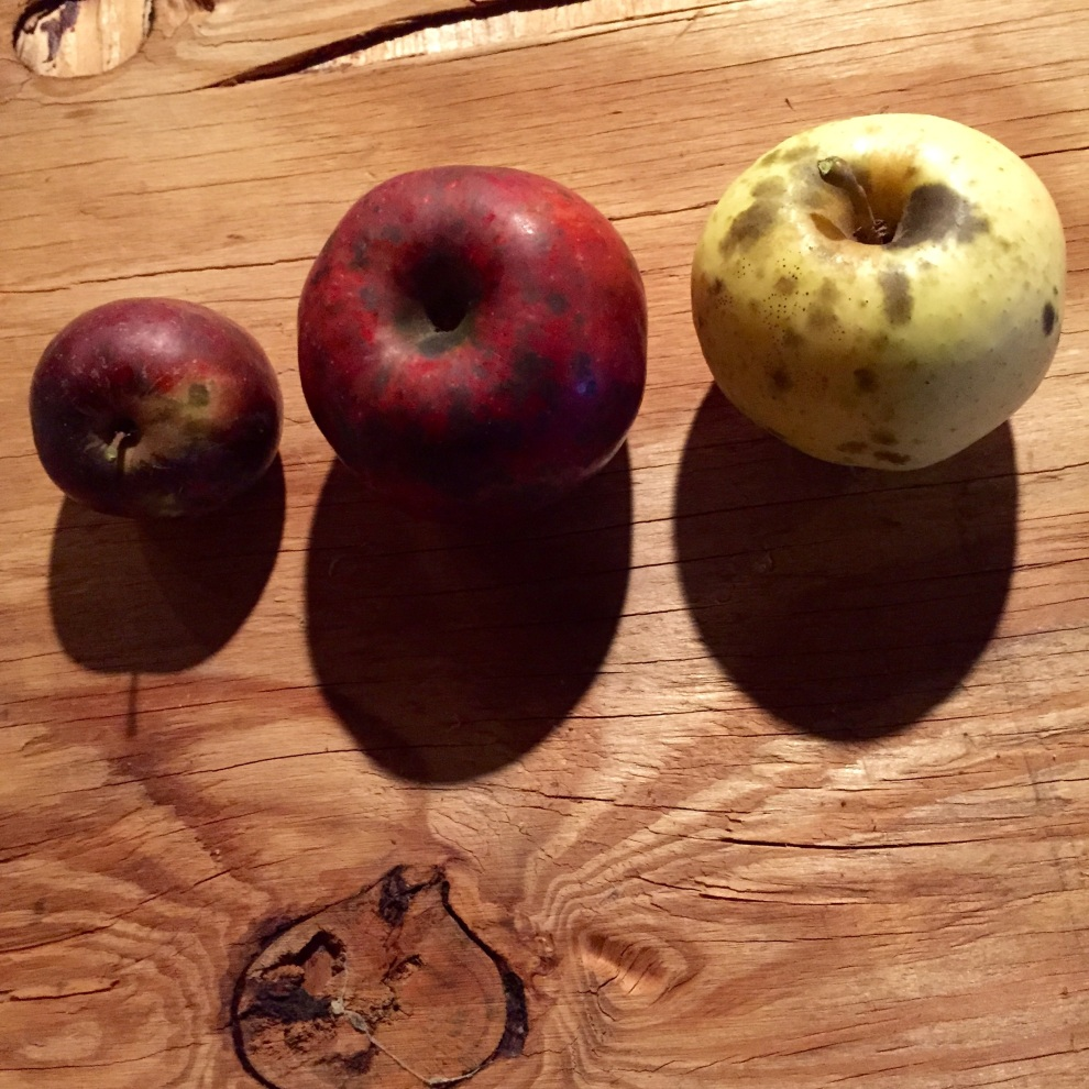 spotted apples